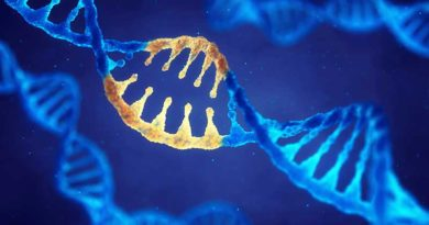 Principali cause genetiche dell'infertilità